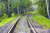 Railway Track In The Forest