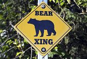 Bear Crossing sign on road