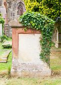 Very Old Gravestone With Green Leaves