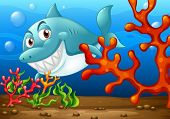 Illustration of a shark under the ocean