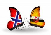 Two Butterflies With Flags On Wings As Symbol Of Relations Norway And Brunei