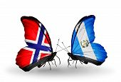Two Butterflies With Flags On Wings As Symbol Of Relations Norway And Guatemala