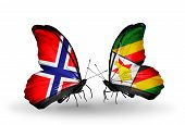 Two Butterflies With Flags On Wings As Symbol Of Relations Norway And Zimbabwe