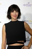 LOS ANGELES - JAN 8:  Catherine Bell at the Hallmark TCA Party at a Tournament House on January 8, 2014 in Pasadena, CA