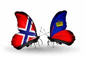 Two Butterflies With Flags On Wings As Symbol Of Relations Norway And Liechtenstein