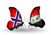 Two Butterflies With Flags On Wings As Symbol Of Relations Norway And Syria