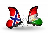 Two Butterflies With Flags On Wings As Symbol Of Relations Norway And  Tajikistan