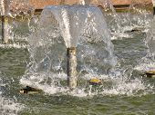 Batter Up Jets Of Fountain With Clean Water