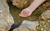 Woman hand on a stream in the Alps
