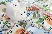 Piggy Bank Placed On Euro Currency