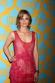 LOS ANGELES - JAN 11:  Stana Katic at the HBO Post Golden Globe Party at a Circa 55, Beverly Hilton Hotel on January 11, 2015 in Beverly Hills, CA