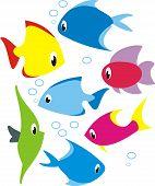 Set of reef fish.