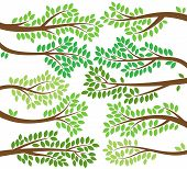 Vector Collection of Leafy Tree Branch Silhouettes