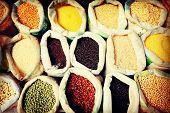 Diverse Multi Colored Legume Bean Sack Market