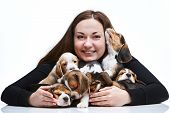 pic of puppy beagle  - The happy  woman and big group of a beagle puppies on white background - JPG