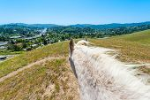 image of horses eating  - Horse standing on a hill looking away from above the horse - JPG