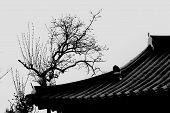 image of korean  - Korean Hanok roof in Black and white - JPG