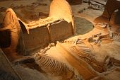 stock photo of hearse  - Ancient chariot with skeletons of horses in Archaeological museum of Luoyang city in China - JPG