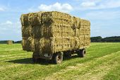 Bales Of Hay On A Trailer Standing In A Grass Field