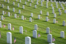 picture of tombstone  - Rows of tombstones with American flags at Arlington National Cemetery on Memorial Day - JPG