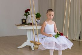 stock photo of fairy tail  - Portrait of little cute ballerina on swing with rose - JPG