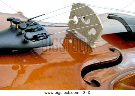 Violin F-holes, Bridge, Fine Tuners poster